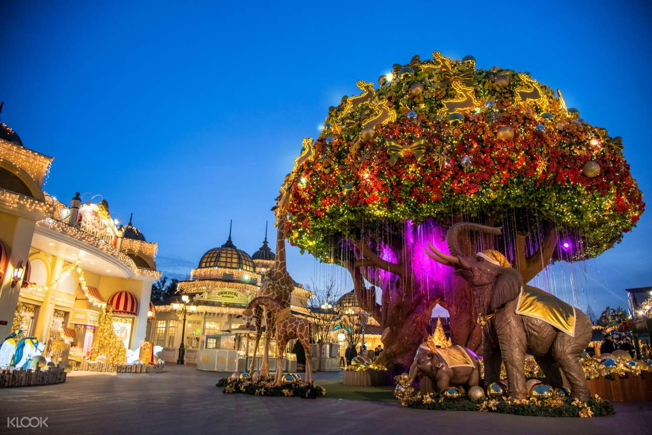 lighted tree and building in everland